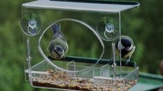 A few of the reasons why this Window Bird Feeder is so popular among families and kids!