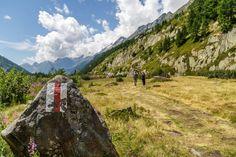 Rundwanderung Blatten/Fafleralp - Anenhütte - Lötschental Hotels, Mountains, Nature, Travel, Switzerland, Hiking, Acre, Ideas, Naturaleza