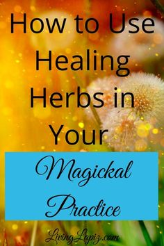 Learn how to use healing herbs to heal yourself and others #herbs #herbalmagick