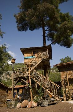Kadir's Top Tree house - unique hostel in Turkey