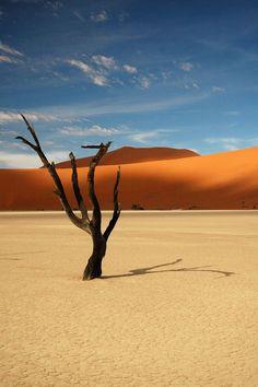 Namibie www. - Whole Wide World Beautiful World, Beautiful Places, Beautiful Pictures, Landscape Photography, Nature Photography, Color Photography, Africa Travel, Belle Photo, Amazing Nature