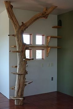 indoor-cat-tree #cattrees - Make your cat happy - Catsincare.com!