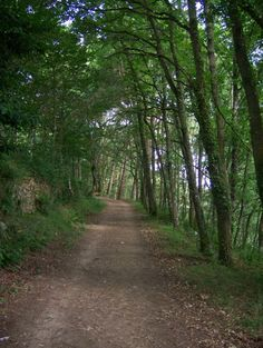 Camino de Santiago en Galicia