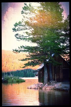 Lake Cabin    		On Silver Lake