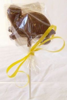Gourmet Chocolate Baby Turtle Lollipop Party Favor