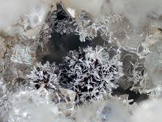 Rhabdophane-(Ce), (Ce,La)PO4•(H2O), Clara Mine, Oberwolfach, Ortenaukreis, Freiburg, District, Black Forest, Germany. White crystals in Quartz druse. Fov 2.3 mm. Collection: Lithothek Munich Micromounter. Copyright: loparit