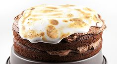 I Want S'more Cake