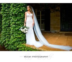 Ali looking stunning at @bendooleyestate - dress by @emodacouture and flowers by @formoverfunctionevents #meetthebosdans #mckayphotography #bendooleyestate #wedding #bowralwedding