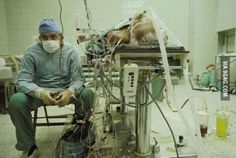 Surgeon after 23-hour heart transplant, and his assistant in the corner.