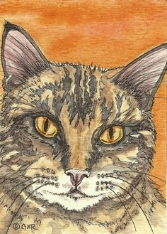 ACEO Tabby Cat Original Watercolor and Ink Art by Gail by Carpiss, $9.99
