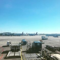 #flyaway