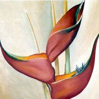 Georgia O'Keeffe Orchid | Georgia O'Keeffe - Artist - Not From My Garden photo ...