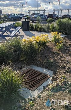 TDS provides various sizes of catch basins and catch basin grates. Shop our online store today for your next residential or commercial project, or call 610-882-3630. #trenchdrainsystems #catchbasin #stormwater #landscape #drains #watercontrol #parks #parkinglots #homeimprovement #replacementgrates Trench Drain Systems, Drainage Solutions, Home Improvement, Sidewalk, Basins, Landscape, Water, Parks, Commercial
