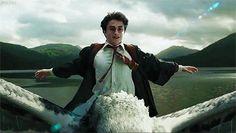 Esta sorprendente y mágica teoría sobre la tía de Harry Potter tiene a los fanáticos vueltos locos