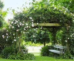 On Victoria's beautiful Mornington Peninsula, this lush country garden is home to a variety of native plants, rolling lawns, colourful flower beds and even a gaggle of geese.