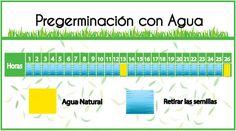 Guia: Producción Intensiva de Forraje Verde : .: Hydro Environment .: Hydroponics, Periodic Table, Environment, Mexico, Pest Control, Irrigation, Periotic Table, Environmental Psychology, Aquaponics