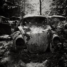 Herbie is Sleeping by Joram Huyben, via 500px