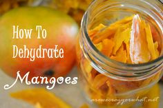 How to Dehydrate Mangoes~AreWeCrazyOrWhat.net