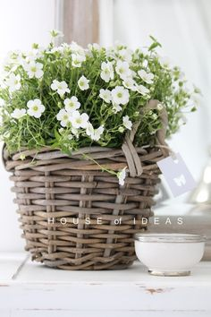 We love this pretty #wicker basket display. Find baskets at www.BasketLady.com.