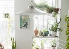 Gabulle in wonderland: Un appartement éclectique et girly