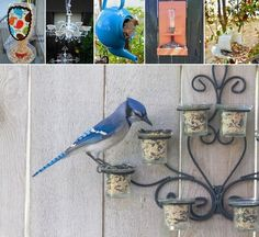 Easy Upcycled Bird Feeders for Your Garden