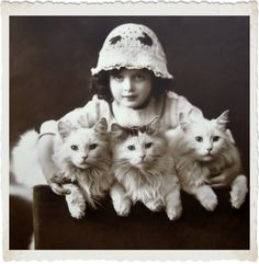 Vintage Photo Digital Download Cats Photo for by MsAlisEmporium