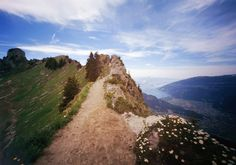 switzerland through a pinhole, part two by Danielle Nelson