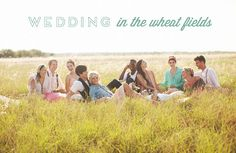 wedding party picture in a field!? yes please