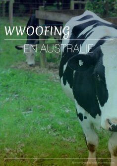 Notre expérience de #wwoofing en #Australie - #WHV Vis ma vie de fermier sur le blog voyage de The Velvet Escape