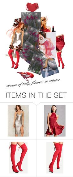 """""""dream of tulip flowers in winter"""" by anastasia-pellerin ❤ liked on Polyvore featuring art and blog"""