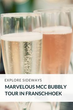 Discover the very best of both Stellenbosch and Franschhoek winelands as you sip on some of the best MCC South Africa has to offer. Sparkling Wine, Wine Recipes, Wines, South Africa, Cape, Champagne, Bubbles, Tours, Explore