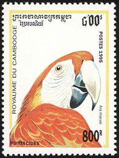 Scarlet Macaw stamps - mainly images - gallery format