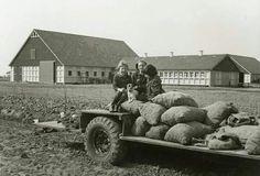 De boerderij in de flevopolder