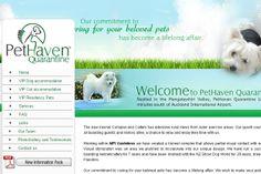 PetHaven Quarantine- Creative Web Design