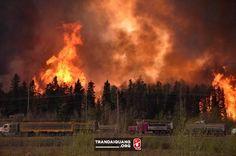 Lửa bốc cao 60 m trong thảm họa cháy rừng ở Canada