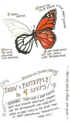 Tutorial: Tips on drawing a butterfly How to draw and color a butterfly from The illustrated garden, Val Webb More from my siteZentangle Art Drawing Lessons, Drawing Techniques, Art Lessons, Drawing Tips, Sketch Drawing, Painting & Drawing, Flag Drawing, Pebble Painting, Rock Painting