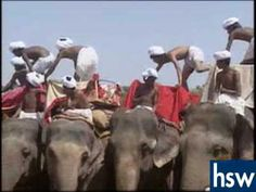 Ancient India-Mauryan Empire  ASOKA conquered India with 9000 elephants and Massive armies killing 10s000s then turning to Buddha.