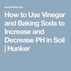 How to Use Vinegar and Baking Soda to Increase and Decrease PH in Soil   Hunker