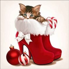 Maryline Cazenave Holiday Kitten: