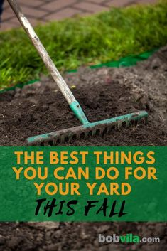 Keep on top of these fall yard care chores and you'll reap the rewards in the spring.   The Best Things You Can Do for Your Yard This Fall Fall Lawn Care, Lawn Care Tips, Fall Clean Up, Lawn Care Business, Yard Maintenance, Front Yard Design, Yard Care, Autumn Garden, Lawn And Garden