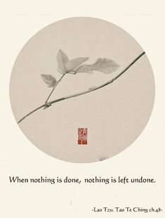 Zen Quotes, Qoutes, Tao Te Ching, Haiku, Perfect Man, Buddhism, Poetry, Pure Products, Consciousness