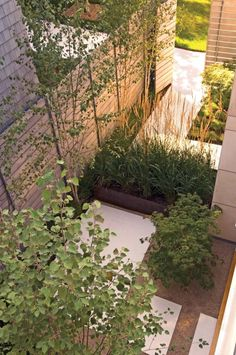 Great use of space in this outdoor garden!