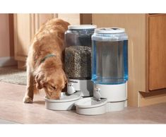 Opened Never Used Utmost In Convenience 1 Free Stainless Steel Full Bowl Microchip Pet Feeder