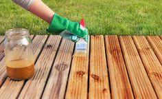 Alles über Holzschutz