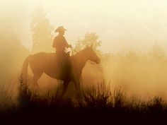 Red Deer River Ranch - Alberta  www.duderanchroundup.com  Misty morning ride. Cowboy and horse in a fog.