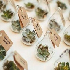 How gorgeous is this idea shared via @lovelywedshop? The glass planters are really cheap & easy source on eBay, and then you can get creative with what you want to put inside! Such a beautiful gift for your guests to take home! Love it