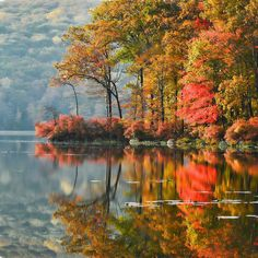 Fall foliage reflected in water