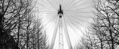 The London Eye by Pip