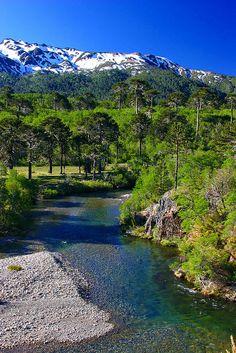 Cordillera de los Andes.. Neuquén.. Argentina...