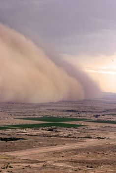 Sand storm in the desert